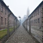 本のレビュー『ヒトラーとナチ・ドイツ』ナチスを知るのにおすすめ本